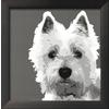 art.com 13-in W x 13-in H Animals Framed Art