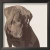art.com 12-in W x 12-in H Animals Framed Art