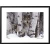 art.com 33-in W x 25-in H Animals Framed Art