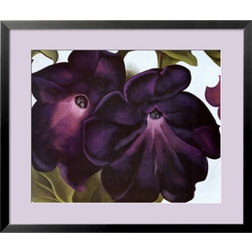 art.com 34-in W x 29-in H Floral and Botanical Framed Art