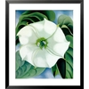 art.com 27-in W x 31-in H Floral and Botanical Framed Art