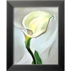 art.com 10-in W x 12-in H Floral and Botanical Framed Wall Art