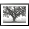 art.com 34.5-in W x 26.375-in H Floral and Botanical Framed Art