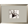 art.com 27-in W x 19-in H Floral and Botanical Framed Art