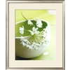 art.com 22.5-in W x 26.5-in H Floral and Botanical Framed Art