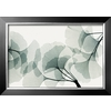 art.com 41.5-in W x 29.5-in H Floral and Botanical Framed Art
