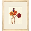 art.com 24-in W x 28-in H Floral and Botanical Framed Wall Art