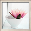 art.com 13-in W x 13-in H Floral & Botanical Framed Wall Art