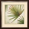 art.com 29.75-in W x 29.75-in H Floral & Botanical Framed Art