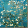 art.com 28-in W x 28-in H Floral and Botanical Canvas