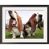 art.com 19.75-in W x 15.75-in H Animals Framed Art