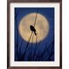 art.com 15.75-in W x 19.75-in H Landscapes Framed Art