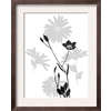 art.com 14.5-in W x 18.25-in H Floral and Botanical Framed Art