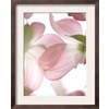art.com 14.75-in W x 18.25-in H Floral and Botanical Framed Art