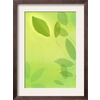 art.com 13.5-in W x 18.25-in H Floral and Botanical Framed Art