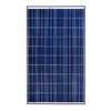 REC Group 65-9/16-in x 39-in 245-Watt Solar Panel