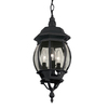 Portfolio 20.67-in Black Outdoor Pendant Light