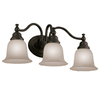 Portfolio 3-Light Brandy Chase Standard Bathroom Vanity Light