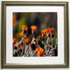 Alpine Art & Mirror 30-in W x 30-in H Waiting for the Sun Framed Art