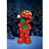 Sesame Workshop Lighted Outdoor Christmas Decoration with White Lights