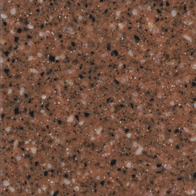 allen + roth Terra Cotta Solid Surface Kitchen Countertop Sample