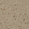 allen + roth Chelan Quartz Kitchen Countertop Sample