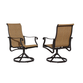 allen + roth Safford 2-Count Brown Aluminum Dining Chairs