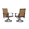 allen + roth Safford Safford 2-Count Brown Aluminum Dining Chair
