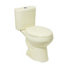 River's Edge Paris Biscuit 1.6; 1.0-GPF 12-in Rough-in Elongated Dual-Flush 2-Piece Comfort Height Toilet