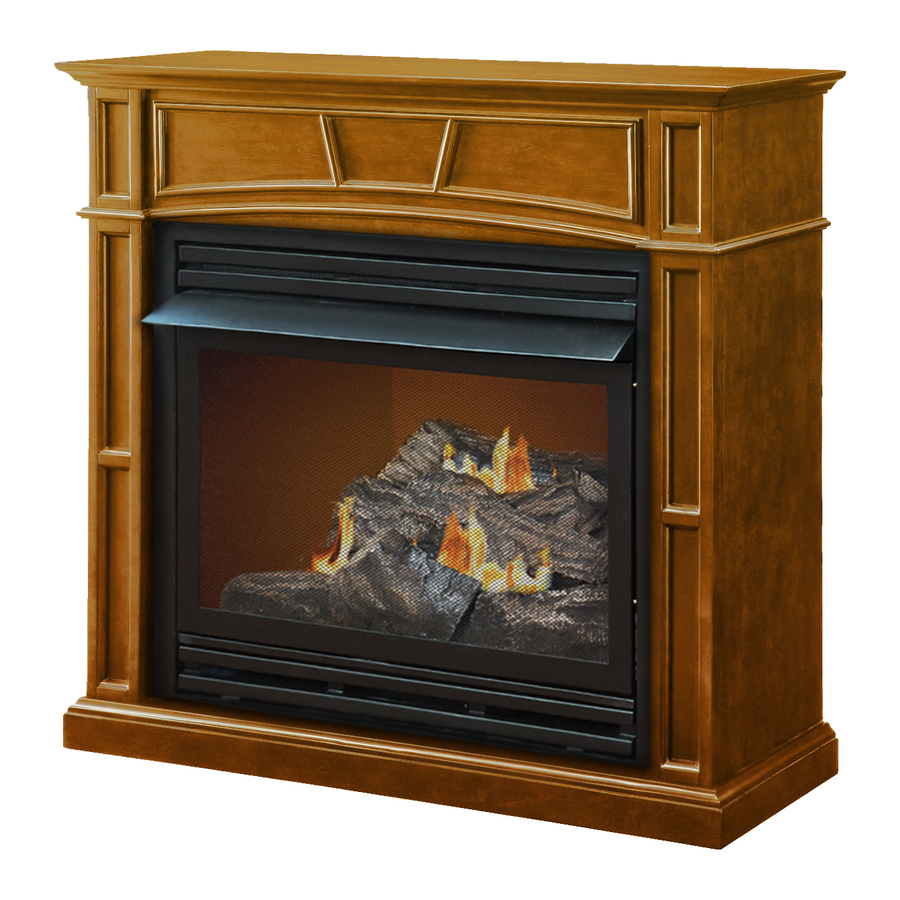 Liquid Propane And Natural Gas Fireplace With Thermostat At