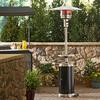 Garden Treasures 41,000-BTU 2-Tone Black/Stainless Steel Floorstanding Liquid Propane Patio Heater