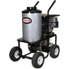 SIMPSON 3000-PSI 3-GPM Water Gas Pressure Washer