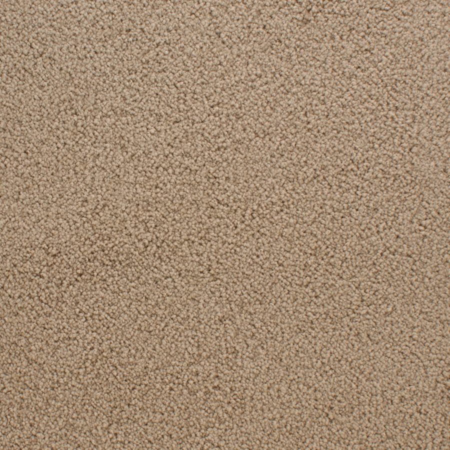 Consumer reviews of stainmaster carpets flooring ask for Stainmaster carpet