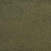 STAINMASTER Active Family Claris Bonnet Plush Indoor Carpet