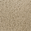 STAINMASTER Active Family Dorchester Cream/Beige/Almond Frieze Indoor Carpet