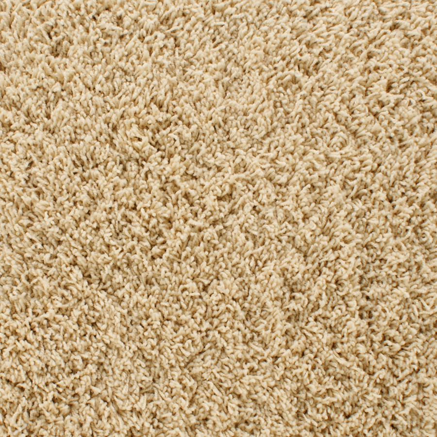 Shop stainmaster active family dorchester cream frieze for Stainmaster carpet