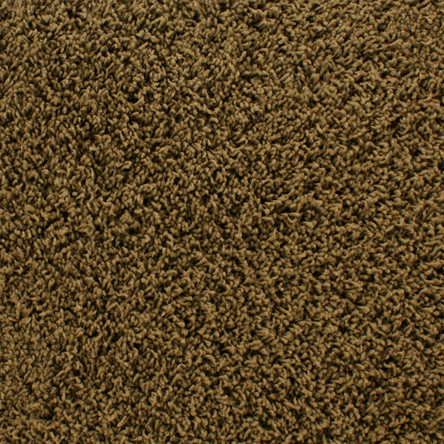 Shop stainmaster active family dorchester brown frieze for Stainmaster carpet