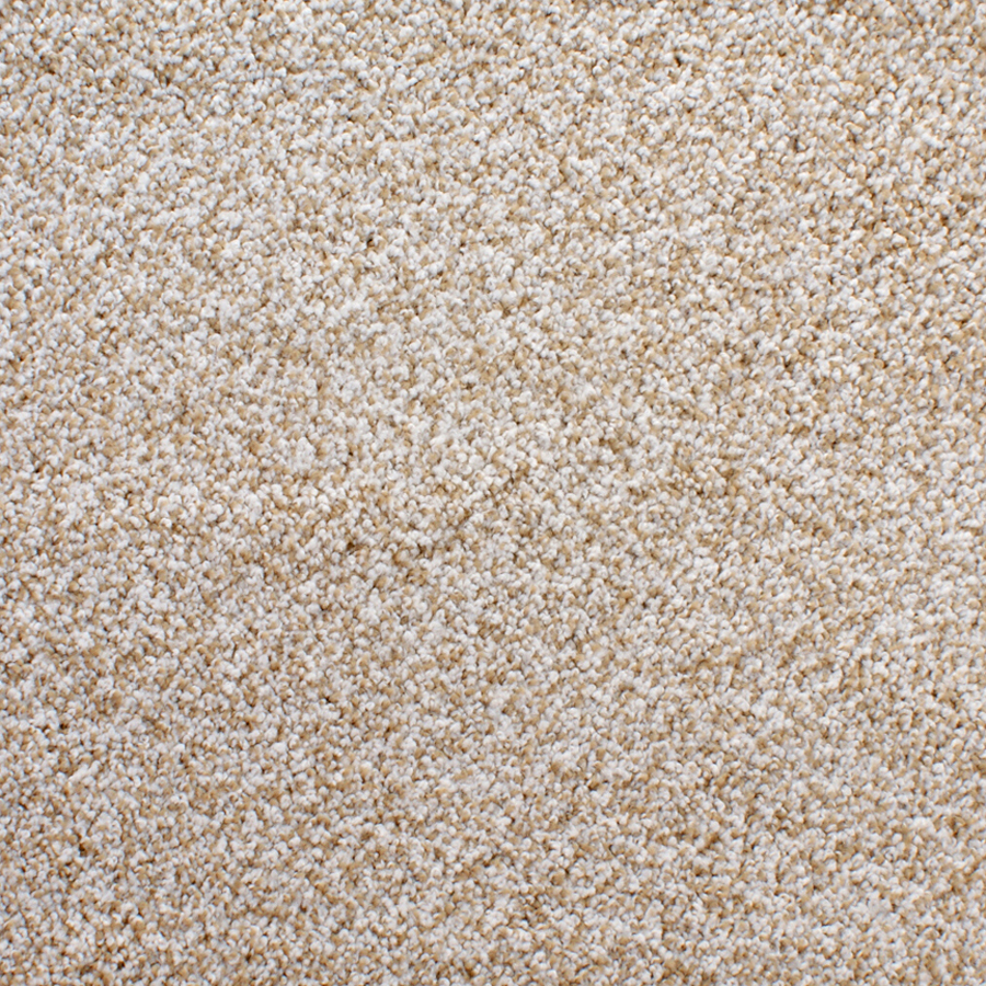 Beige Carpet Texture - Viewing Gallery