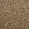 STAINMASTER Active Family Huntington Heights Brown/Tan Textured Indoor Carpet