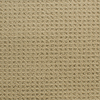 STAINMASTER Active Family San Domenico Brown/Tan Fashion Forward Indoor Carpet