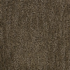 Dixie Group PetProtect Vertigo Brown/Tan Cut and Loop Indoor Carpet