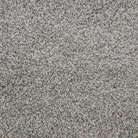 Dixie Group Active Family Exuberance II Gray/Silver Textured Indoor Carpet