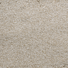 Dixie Group Active Family Exuberance II 110 Cream Textured Indoor Carpet