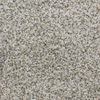 Dixie Group Active Family Exuberance II Multicolor Textured Indoor Carpet