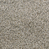 Dixie Group Active Family Exuberance II Brown/Tan Textured Indoor Carpet