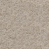 Dixie Group Active Family Exuberance IIl Brown/Tan Textured Indoor Carpet