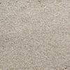 Dixie Group Active Family Gallery Cream Textured Indoor Carpet