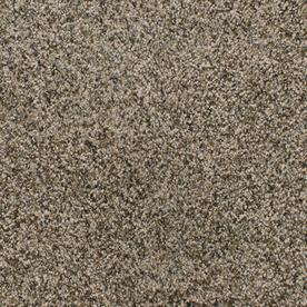 Dixie Group Active Family Exuberance III Brown/Tan Textured Indoor Carpet