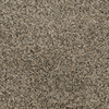 Dixie Group Active Family Gallery Brown Textured Indoor Carpet