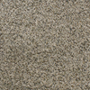 Dixie Group Active Family Exuberance III Brown/Tan Textured Indoor Carpet